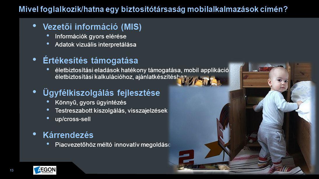 13 Mivel foglalkozik/hatna egy biztosítótársaság mobilalkalmazások címén? 17 115 Vezetői információ (MIS) Információk gyors elérése Adatok vizuális in