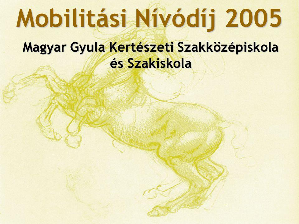 Mobilitási Nívódíj 2005 Hansági Ferenc Szakiskola és Szakközépiskola