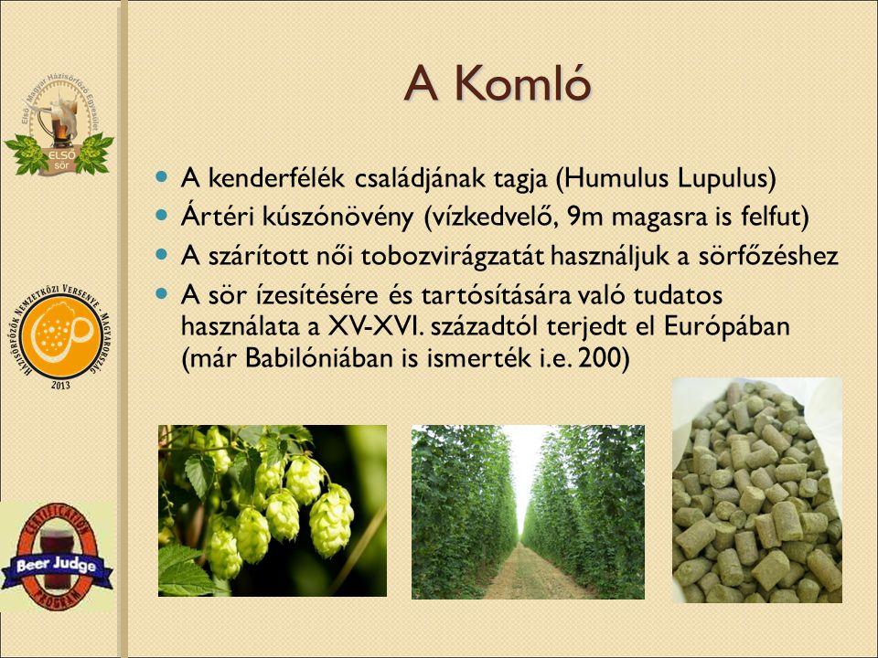 A Komló A kenderfélék családjának tagja (Humulus Lupulus) Ártéri kúszónövény (vízkedvelő, 9m magasra is felfut) A szárított női tobozvirágzatát haszná