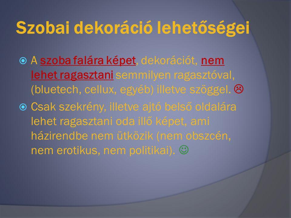 Értékes tárgyak  Szobában értékes műszaki cikkek (laptop, hűtő) külön névre szóló engedély birtokában tarthatóak.