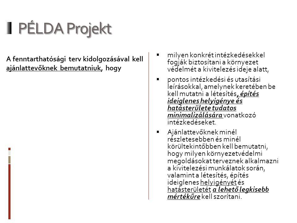 PÉLDA Projekt  milyen konkrét intézkedésekkel fogják biztosítani a környezet védelmét a kivitelezés ideje alatt,  pontos intézkedési és utasítási le