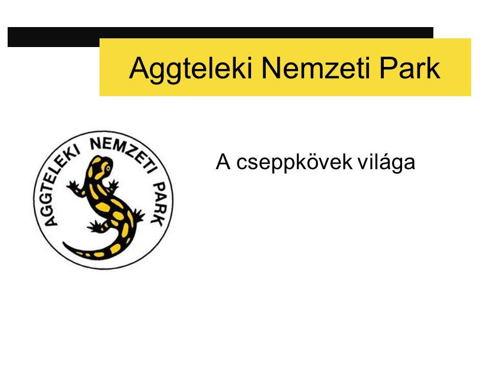Adatok × Elhelyezkedése: Aggteleki-karszt × Legközelebbi város: Szendrő, Borsod-Abaúj-Zemplén megye × Terület: 201,70 km² × Alapítás ideje: 1985.
