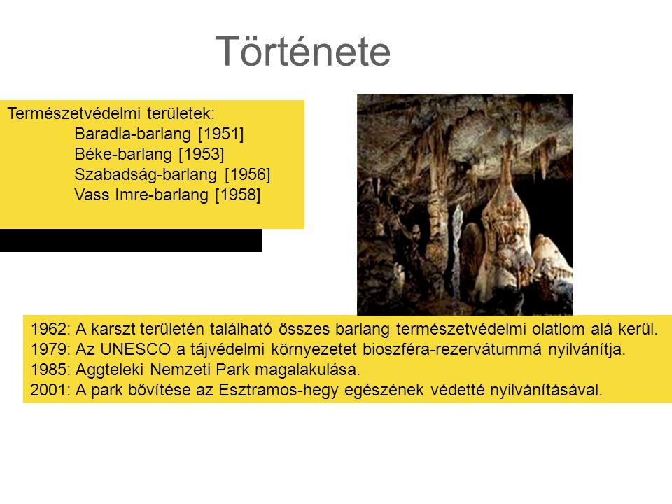 Története Természetvédelmi területek: Baradla-barlang [1951] Béke-barlang [1953] Szabadság-barlang [1956] Vass Imre-barlang [1958] 1962: A karszt területén található összes barlang természetvédelmi olatlom alá kerül.