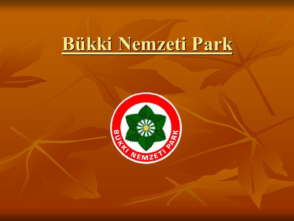Bükki Nemzeti Park (BNP) Hazánk első (hegyvidéki) nemzeti parkja Hazánk első (hegyvidéki) nemzeti parkja Alapítás ideje: 1977 Alapítás ideje: 1977 Elhelyezkedése: Északi- Középhegység: Bükk Elhelyezkedése: Északi- Középhegység: Bükk Területe: 402.63 km2 Területe: 402.63 km2 Igazgatósága Egerben található Igazgatósága Egerben található Címernövénye: Szártalan bábakalács (Carlina acaulis) Címernövénye: Szártalan bábakalács (Carlina acaulis)
