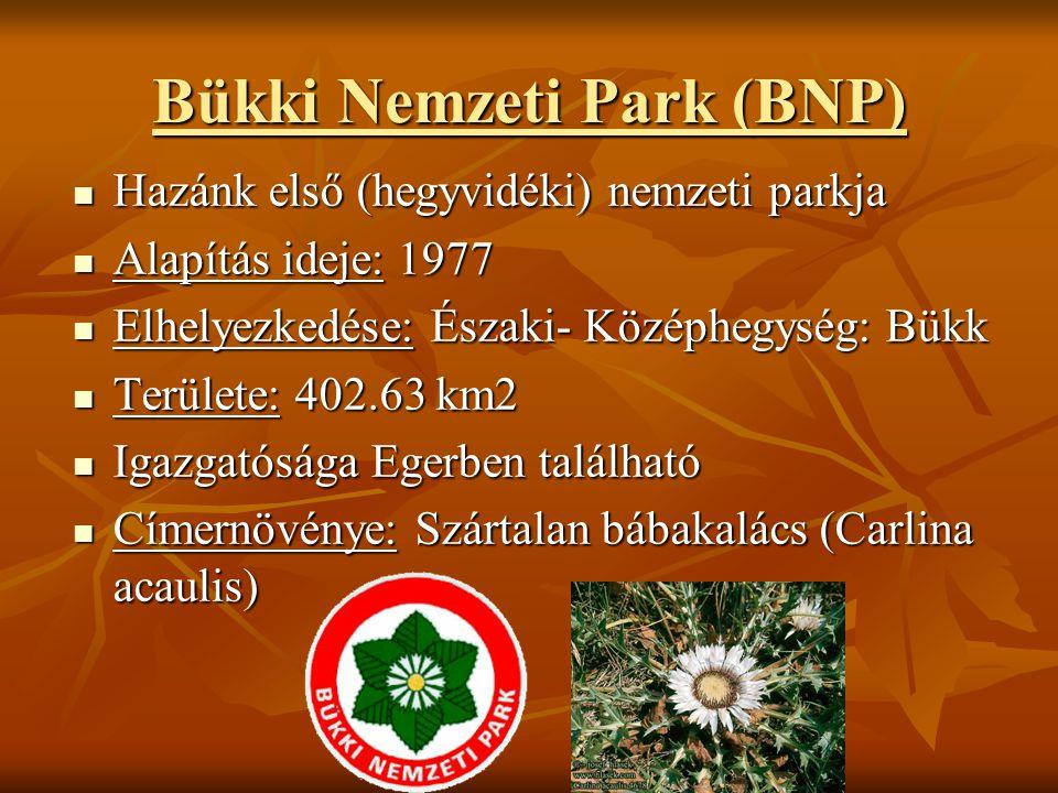 Bükki Nemzeti Park (BNP) Hazánk első (hegyvidéki) nemzeti parkja Hazánk első (hegyvidéki) nemzeti parkja Alapítás ideje: 1977 Alapítás ideje: 1977 Elh