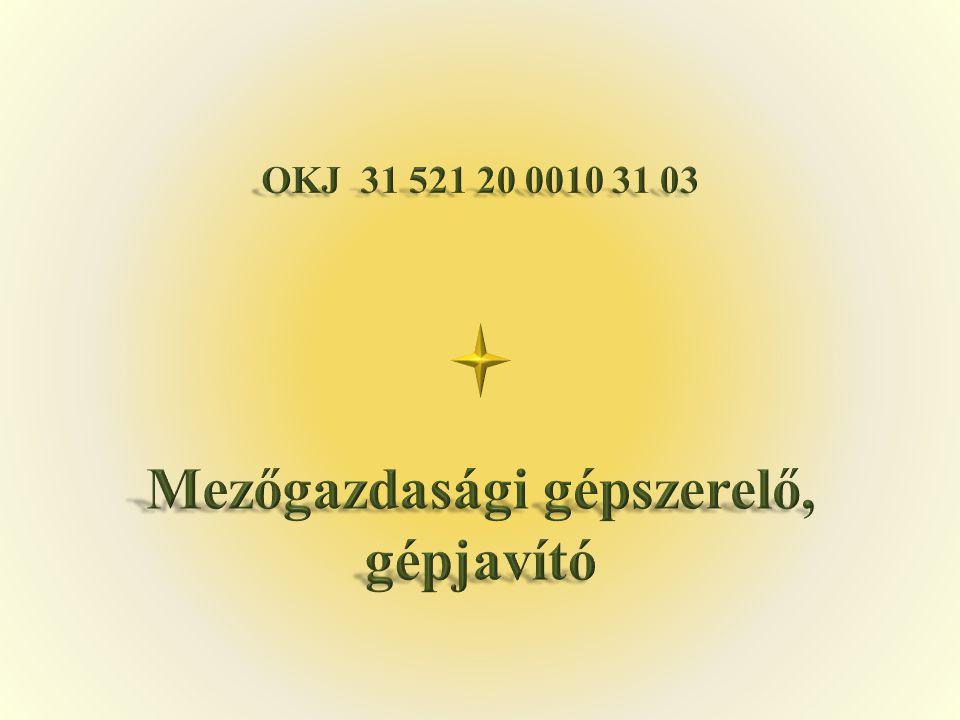 1.1.Búzás Mihály Békés Megyei Tisza Kálmán Közoktatási Intézmény Békés, Hőzső utca 39.