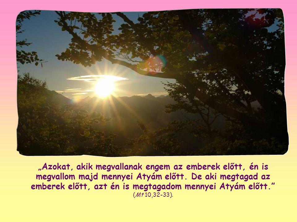 """""""Azokat, akik megvallanak engem az emberek előtt, én is megvallom majd mennyei Atyám előtt."""