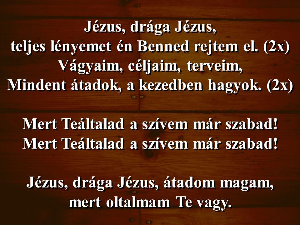 Jézus, drága Jézus, teljes lényemet én Benned rejtem el. (2x) Vágyaim, céljaim, terveim, Mindent átadok, a kezedben hagyok. (2x) Mert Teáltalad a szív