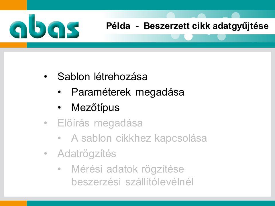 Példa - Beszerzett cikk adatgyűjtése Sablon létrehozása Paraméterek megadása Mezőtípus Előírás megadása A sablon cikkhez kapcsolása Adatrögzítés Mérési adatok rögzítése beszerzési szállítólevélnél