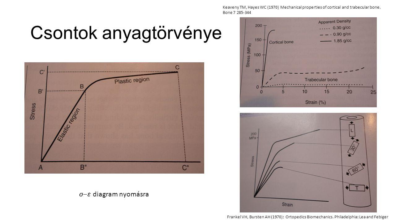 In vitro vizsgálatok lefolytatása III.