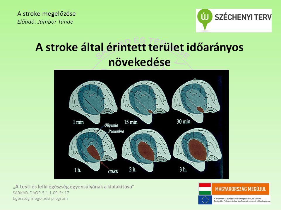 """A stroke által érintett terület időarányos növekedése """"A testi és lelki egészség egyensúlyának a kialakítása"""" SARKAD-DAOP-5.1.1-09-2f-17 Egészség megő"""