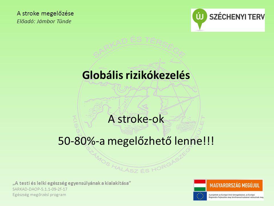 """Globális rizikókezelés A stroke-ok 50-80%-a megelőzhető lenne!!! """"A testi és lelki egészség egyensúlyának a kialakítása"""" SARKAD-DAOP-5.1.1-09-2f-17 Eg"""