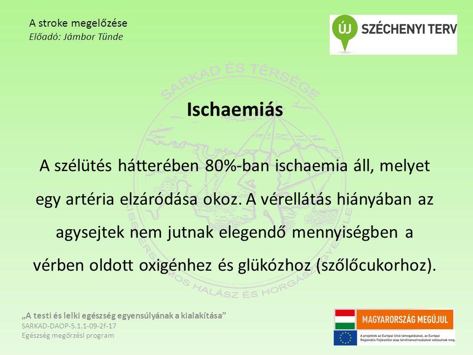 Ischaemiás A szélütés hátterében 80%-ban ischaemia áll, melyet egy artéria elzáródása okoz. A vérellátás hiányában az agysejtek nem jutnak elegendő me