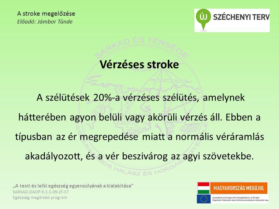 Vérzéses stroke A szélütések 20%-a vérzéses szélütés, amelynek hátterében agyon belüli vagy akörüli vérzés áll. Ebben a típusban az ér megrepedése mia