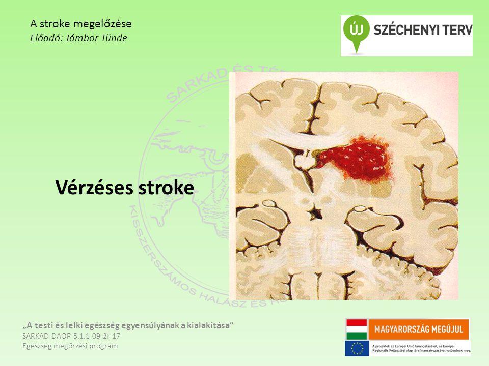 """Vérzéses stroke """"A testi és lelki egészség egyensúlyának a kialakítása"""" SARKAD-DAOP-5.1.1-09-2f-17 Egészség megőrzési program A stroke megelőzése Előa"""