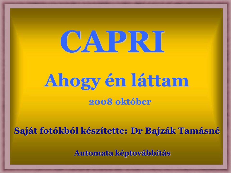 CAPRI Ahogy én láttam Saját fotókból készítette: Dr Bajzák Tamásné Automata képtovábbítás 2008 október