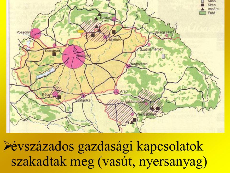 évszázados gazdasági kapcsolatok szakadtak meg (vasút, nyersanyag)
