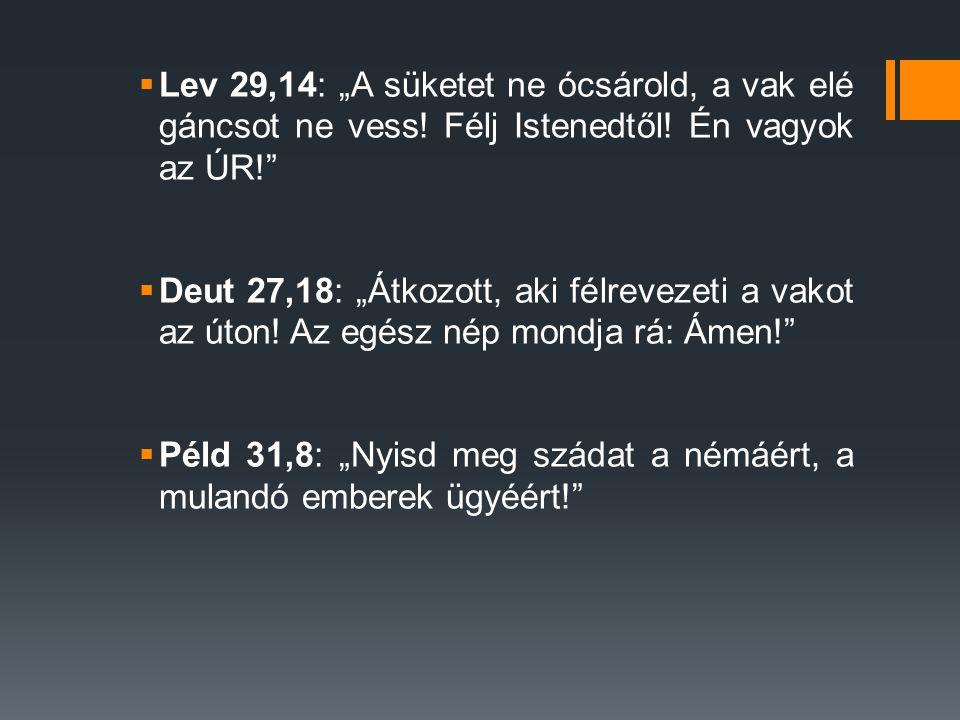 """ Lev 29,14: """"A süketet ne ócsárold, a vak elé gáncsot ne vess! Félj Istenedtől! Én vagyok az ÚR!""""  Deut 27,18: """"Átkozott, aki félrevezeti a vakot az"""