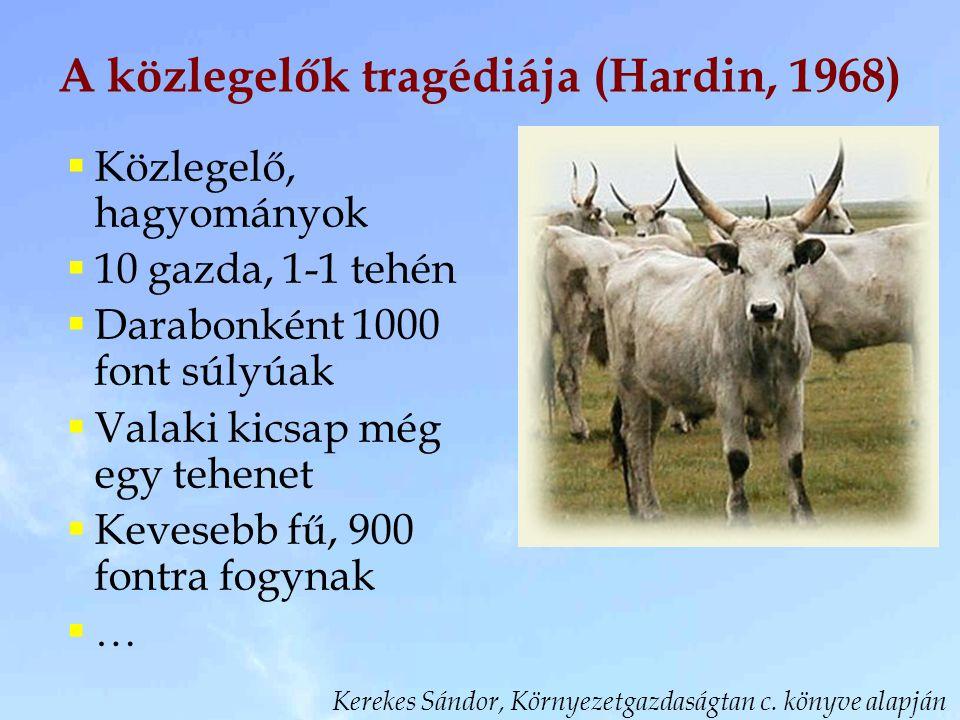 A közlegelők tragédiája (Hardin, 1968)  Közlegelő, hagyományok  10 gazda, 1-1 tehén  Darabonként 1000 font súlyúak  Valaki kicsap még egy tehenet  Kevesebb fű, 900 fontra fogynak  … Kerekes Sándor, Környezetgazdaságtan c.