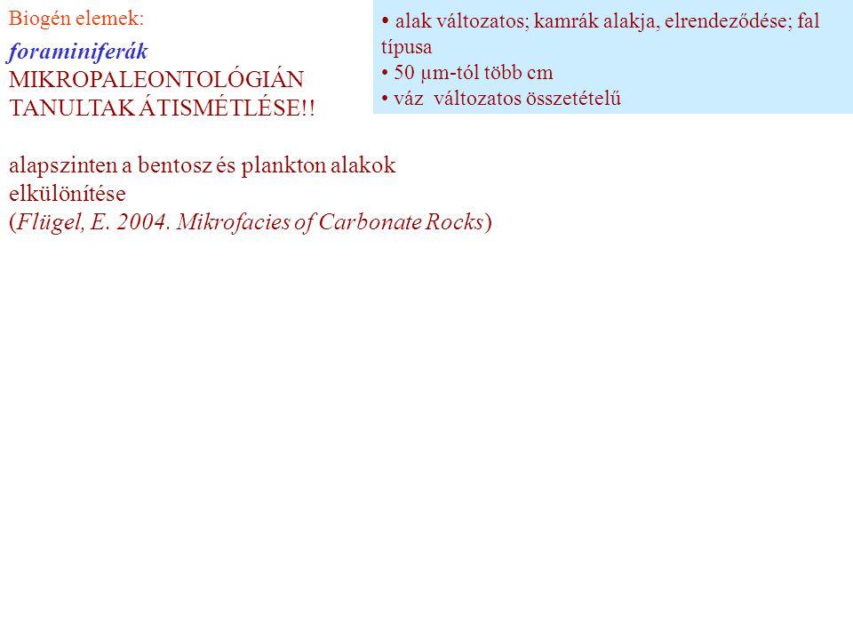 Biogén elemek: foraminiferák MIKROPALEONTOLÓGIÁN TANULTAK ÁTISMÉTLÉSE!! alapszinten a bentosz és plankton alakok elkülönítése (Flügel, E. 2004. Mikrof