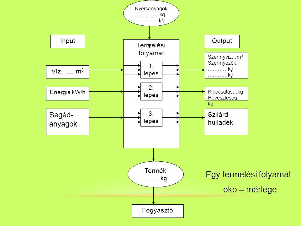 Nyersanyagok …………..kg ……… …kg Termelési folyamat Víz…….m 3 Energia kW/h Segéd- anyagok. 1. lépés 2. lépés 3. lépés Szennyvíz…m 3 Szennyezők: …………kg Sz