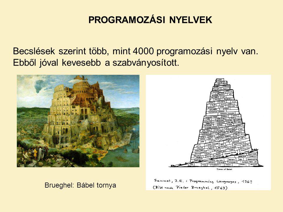 PROGRAMOZÁSI NYELVEK Becslések szerint több, mint 4000 programozási nyelv van.