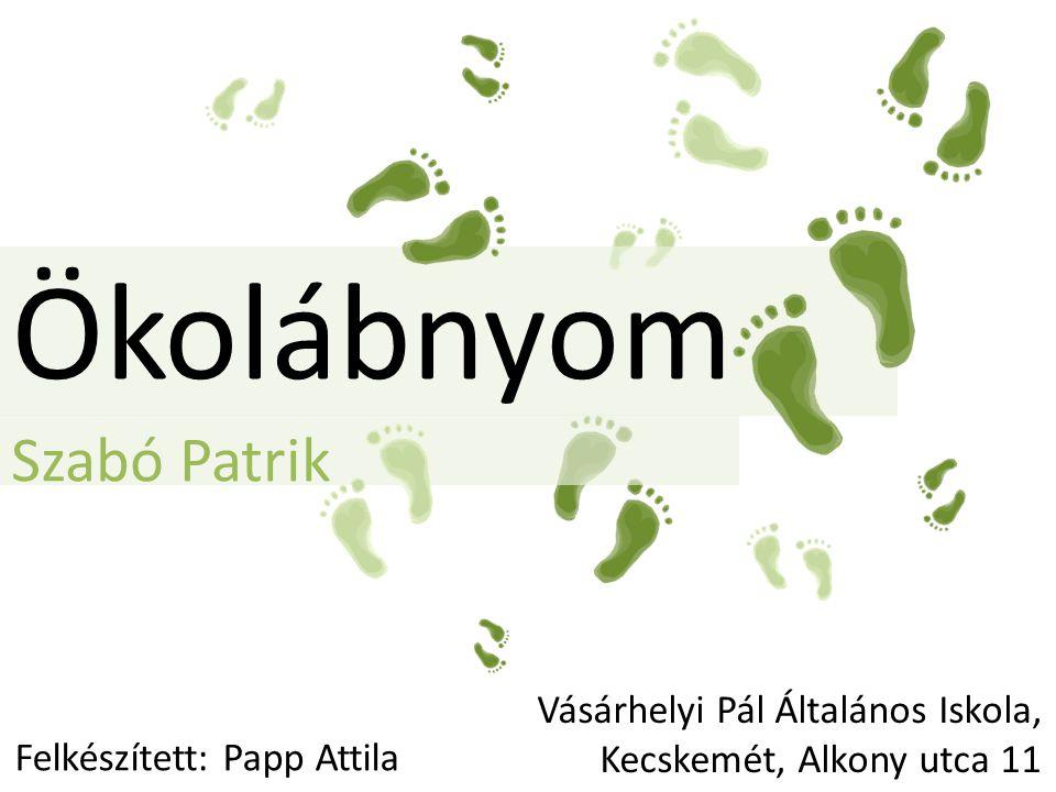 Szabó Patrik Ökolábnyom Felkészített: Papp Attila Vásárhelyi Pál Általános Iskola, Kecskemét, Alkony utca 11