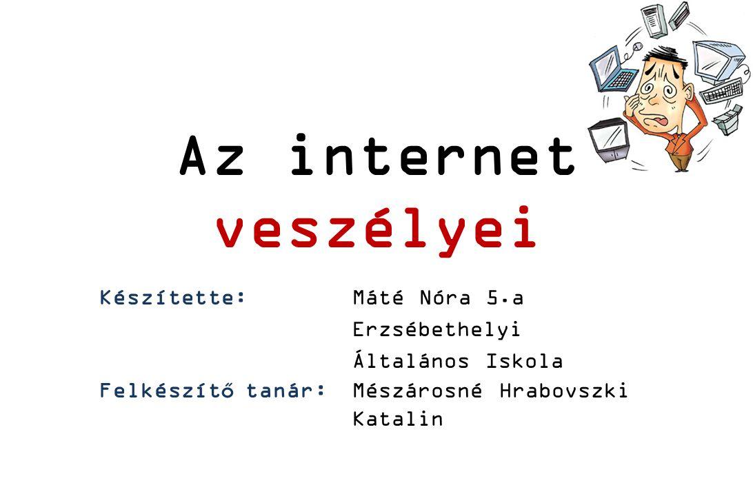 Bevezetés Az internet ma már olyan, mint a villany-, a víz-, vagy a telefonszolgáltatás.