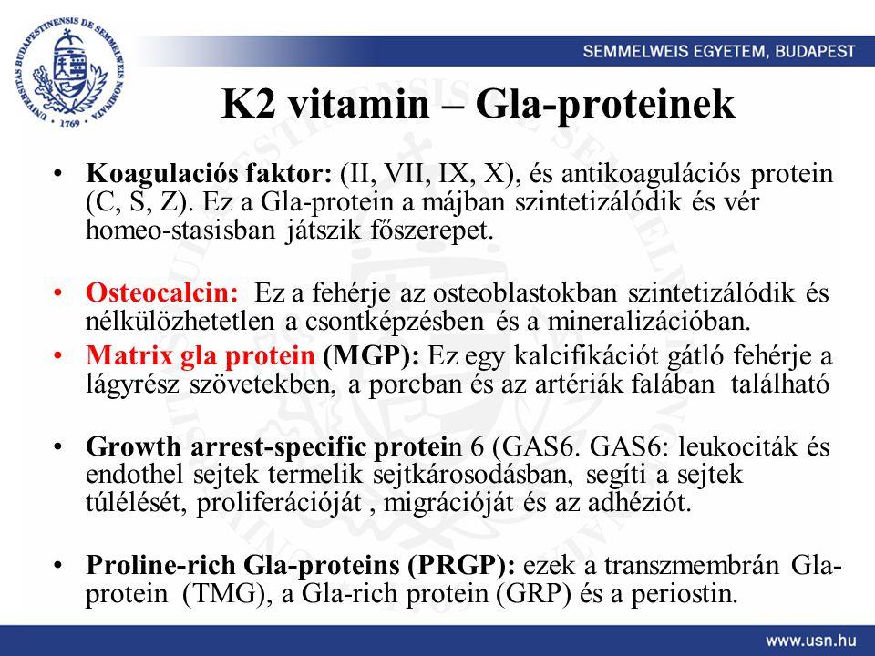 K2 vitamin – Gla-proteinek Koagulaciós faktor: (II, VII, IX, X), és antikoagulációs protein (C, S, Z). Ez a Gla-protein a májban szintetizálódik és vé