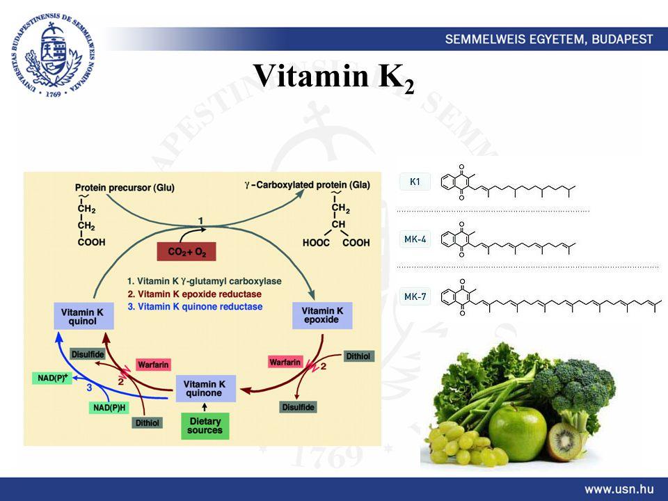 Vitamin K 2