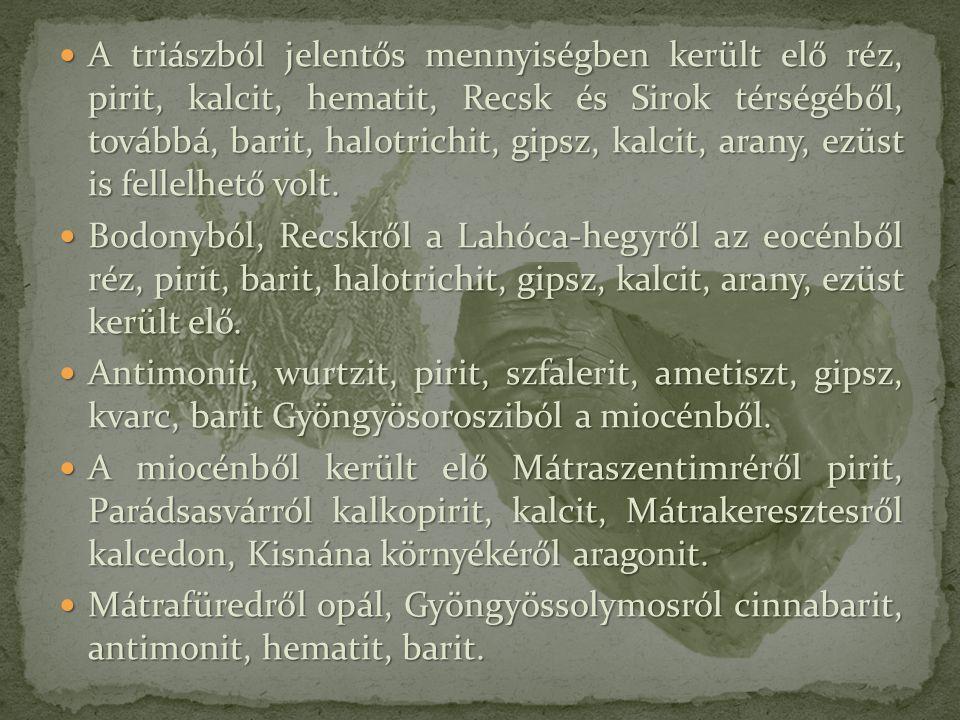 A triászból jelentős mennyiségben került elő réz, pirit, kalcit, hematit, Recsk és Sirok térségéből, továbbá, barit, halotrichit, gipsz, kalcit, arany
