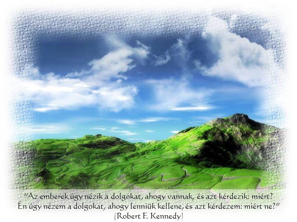 A bölcs nem az, aki soha nem szenvedett, hanem aki átélte és legy ő zte a kétségbeesést! (Indiai tanítás)