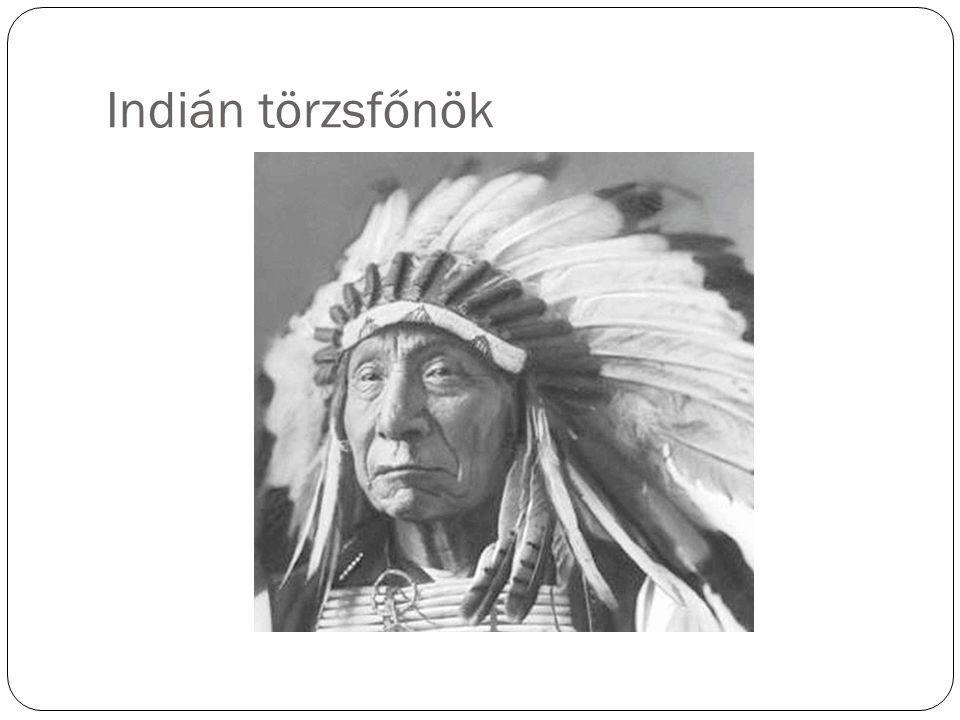 Indián törzsfőnök