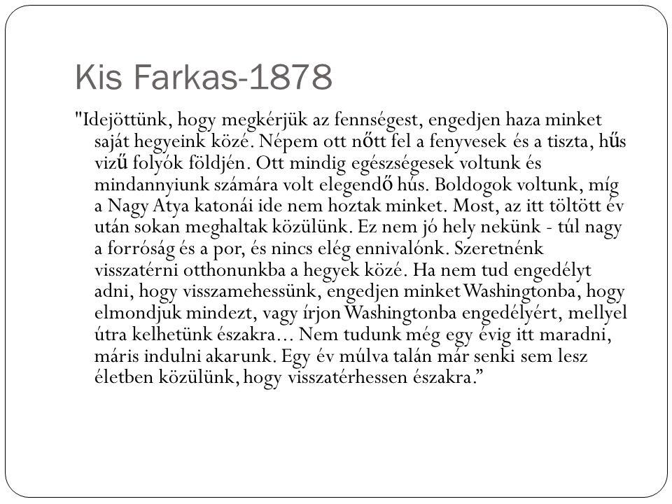 Kis Farkas-1878 Idejöttünk, hogy megkérjük az fennségest, engedjen haza minket saját hegyeink közé.