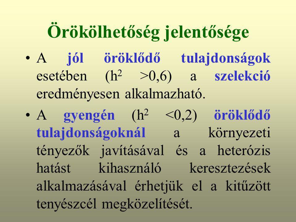 Örökölhetőség jelentősége A jól öröklődő tulajdonságok esetében (h 2 >0,6) a szelekció eredményesen alkalmazható. A gyengén (h 2 <0,2) öröklődő tulajd