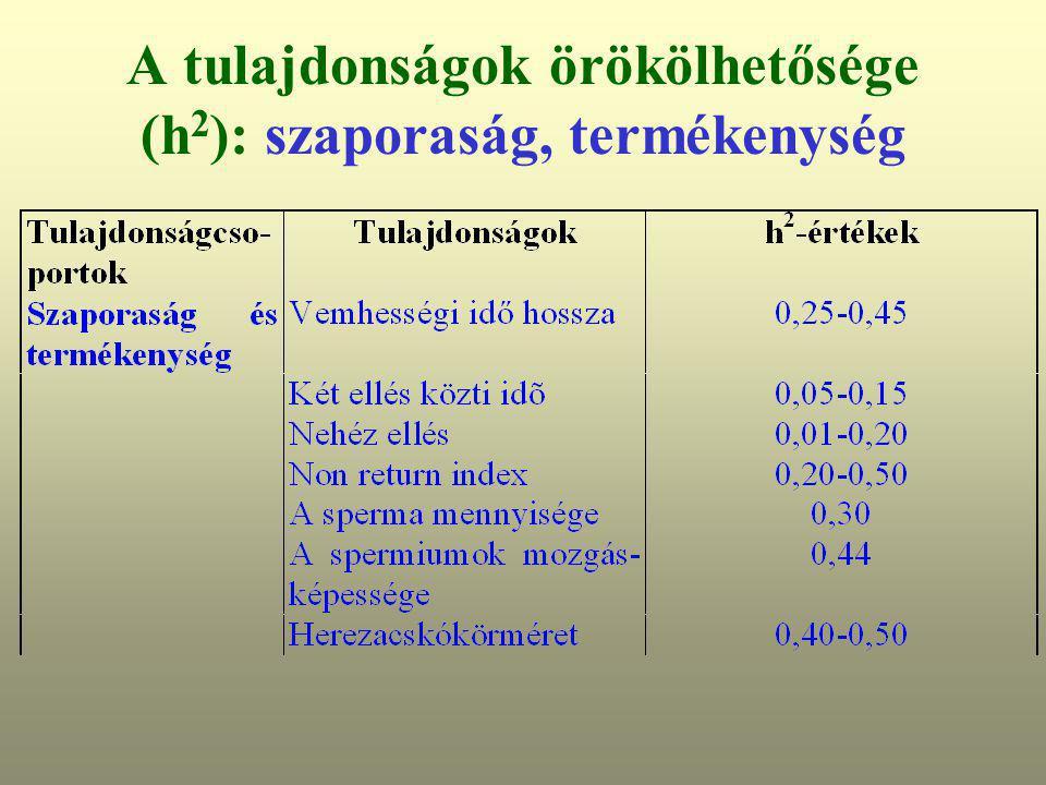 A tulajdonságok örökölhetősége (h 2 ): szaporaság, termékenység