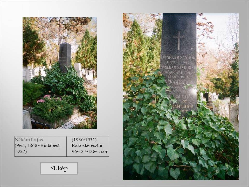 Nékám Lajos (Pest, 1868 - Budapest, 1957) (1930/1931) Rákoskeresztúr, 96-137-138-1. sor 31.kép