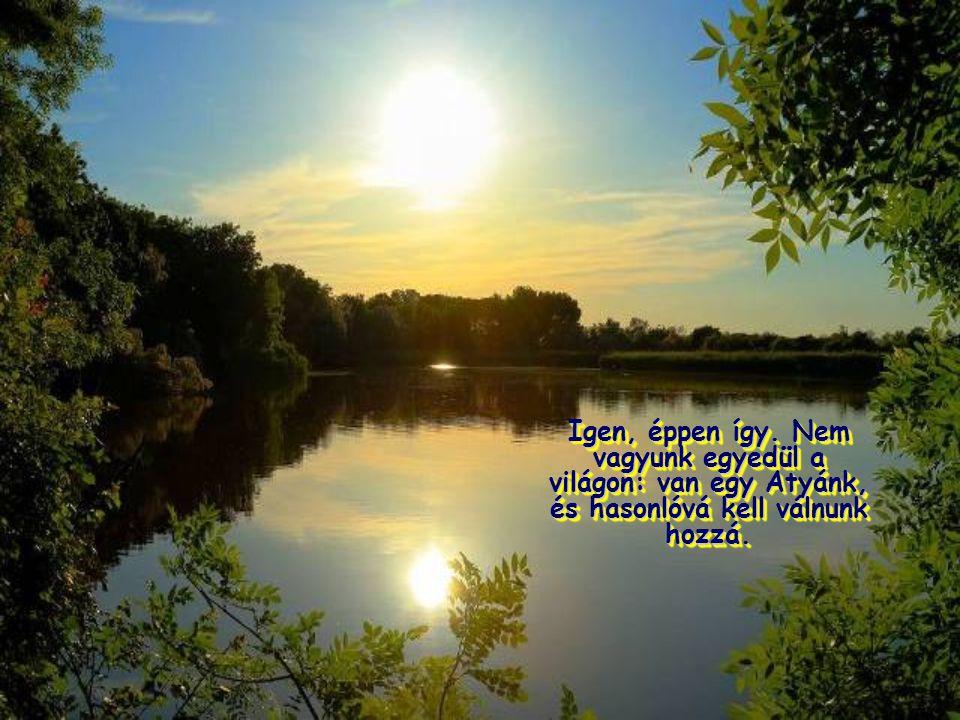 """Mert azt akarja, hogy az Atyára tekintsünk, őt utánozzuk; Istent, aki """"felkelti napját jókra és rosszakra, esőt ad igazaknak és bűnösöknek""""."""