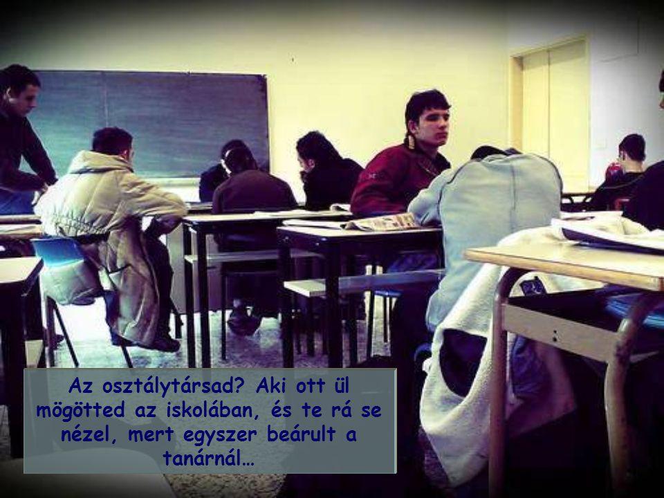 Az osztálytársad.
