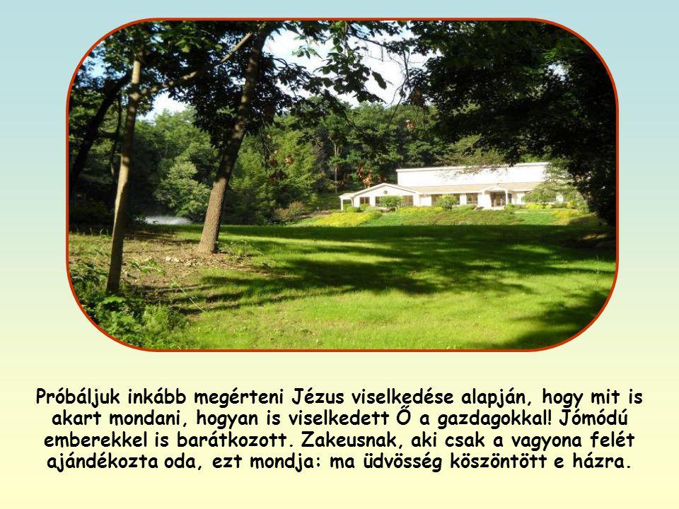 Megdöbbent ez a mondat? Azt hiszem, igazad van, ha meglepődsz rajta, és elgondolkodsz azon, hogy mit is tehetnél. Jézus semmit sem mondott véletlenül.