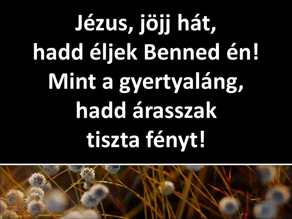 Jézus, jöjj hát, hadd éljek Benned én! Mint a gyertyaláng, hadd árasszak tiszta fényt!