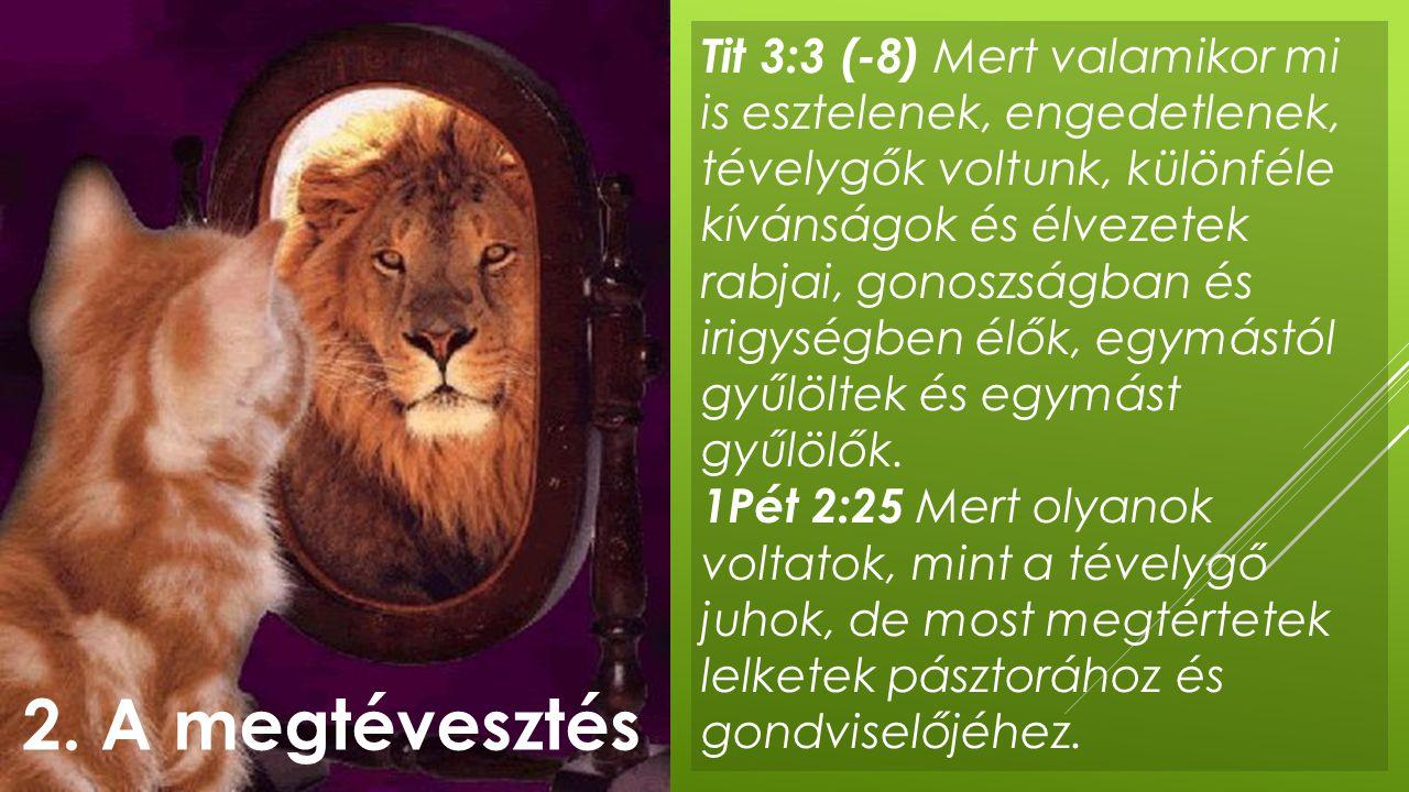 Tit 3:3 (-8) Mert valamikor mi is esztelenek, engedetlenek, tévelygők voltunk, különféle kívánságok és élvezetek rabjai, gonoszságban és irigységben é