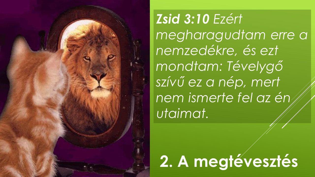 Zsid 3:10 Ezért megharagudtam erre a nemzedékre, és ezt mondtam: Tévelygő szívű ez a nép, mert nem ismerte fel az én utaimat. 2. A megtévesztés