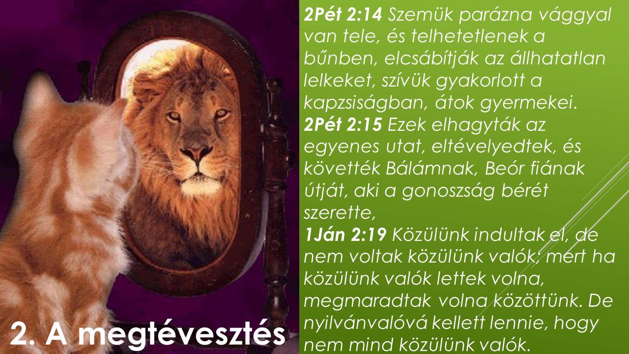 2Pét 2:14 Szemük parázna vággyal van tele, és telhetetlenek a bűnben, elcsábítják az állhatatlan lelkeket, szívük gyakorlott a kapzsiságban, átok gyer