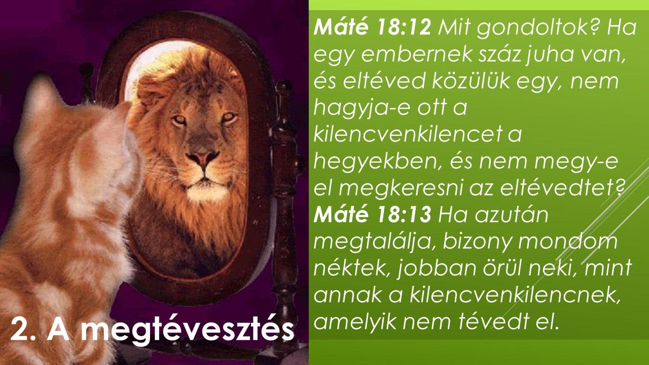Máté 18:12 Mit gondoltok? Ha egy embernek száz juha van, és eltéved közülük egy, nem hagyja-e ott a kilencvenkilencet a hegyekben, és nem megy-e el me