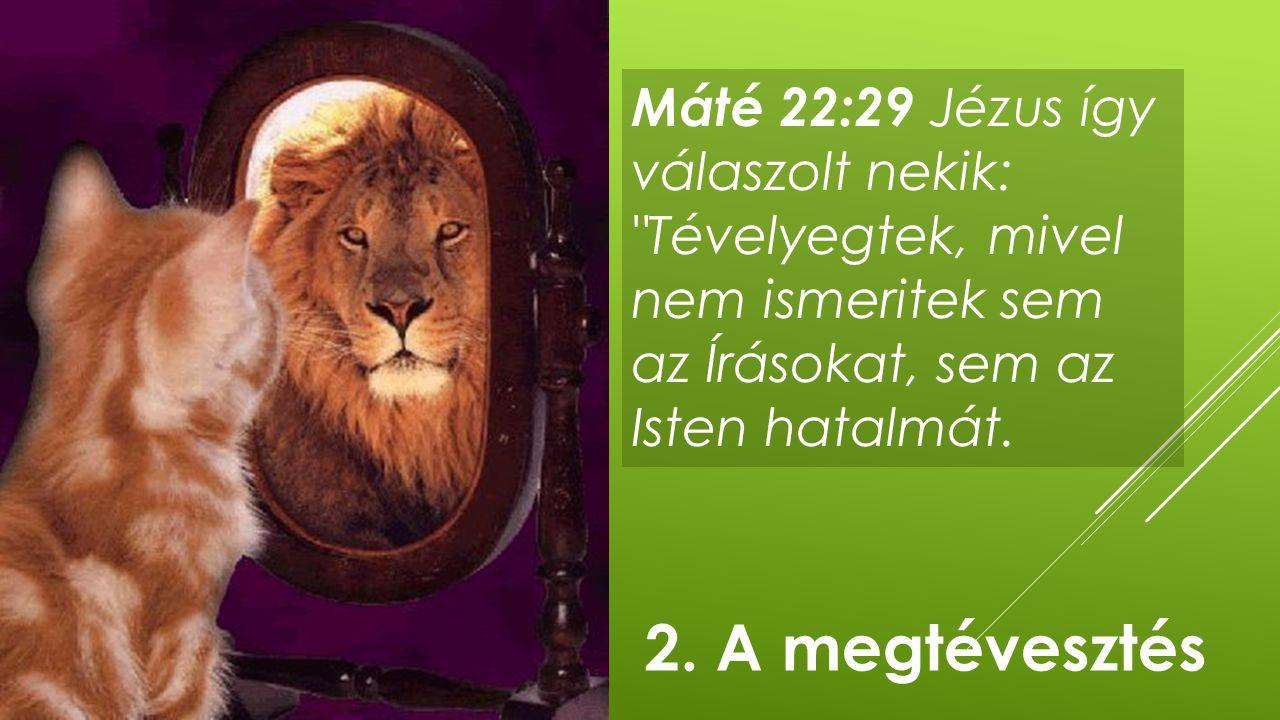 Máté 22:29 Jézus így válaszolt nekik: