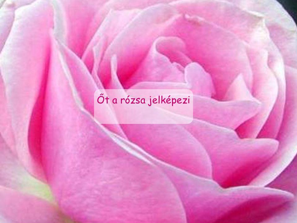 Őt a rózsa jelképezi