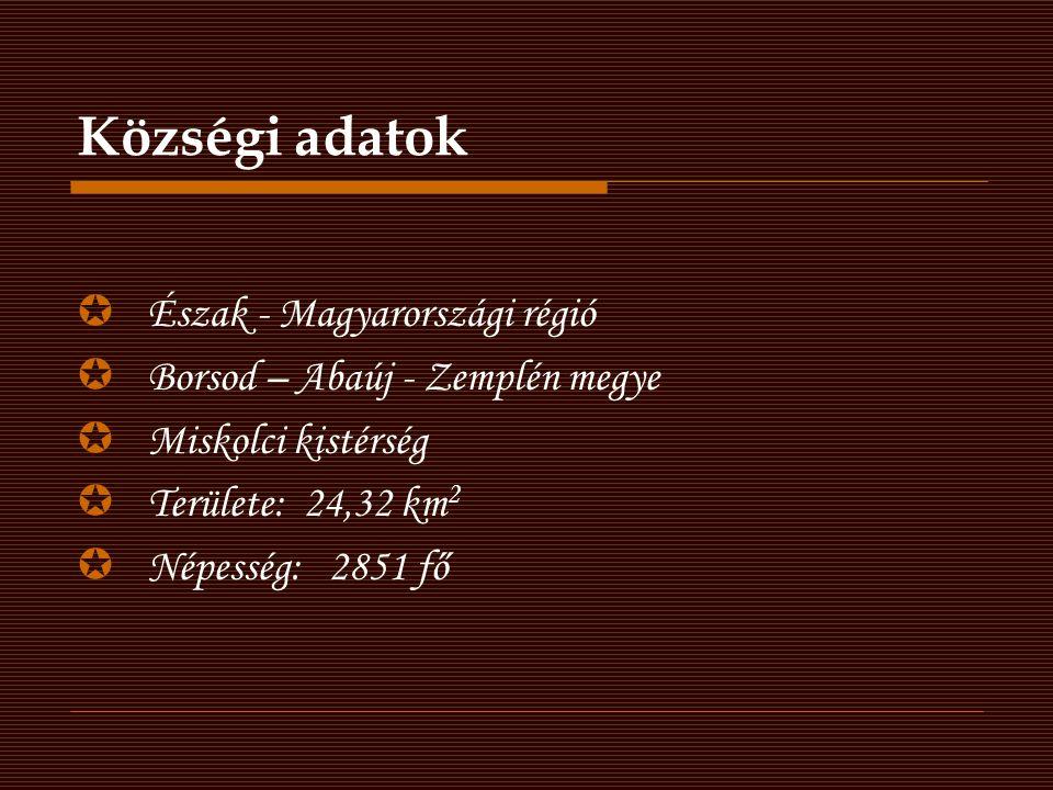 A Bőcsiek büszkék múltjukra Forrás: www.bocskozseg.hu