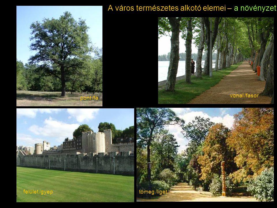 A város természetes alkotó elemei – a növényzet pont /fa vonal /fasor felület /gyeptömeg /liget
