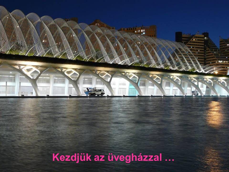 A Művészetek és a Tudományok városa Valence-ben, ez egy kis tiszteletadás szülővárosának.